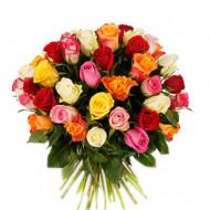 Bright Mixed Rose