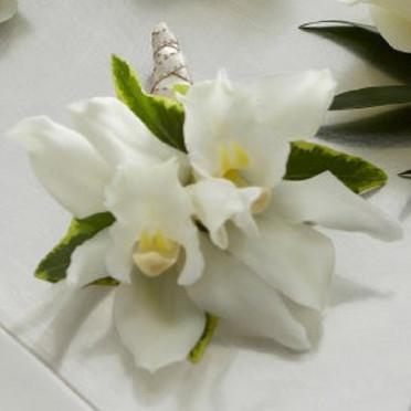 Mini Cymbidium Orchid Buttonhole