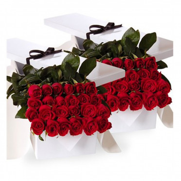 Four Dozen Red Roses in a Gift Box