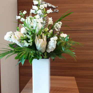 Office  Flower Subscription